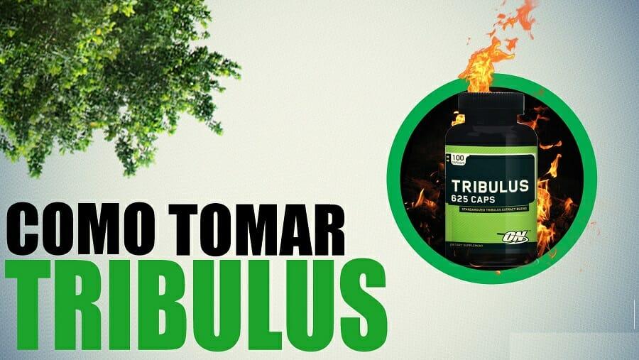 Tribulus funciona para ganhar massa muscular e aumentar o GH